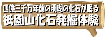 shizen4